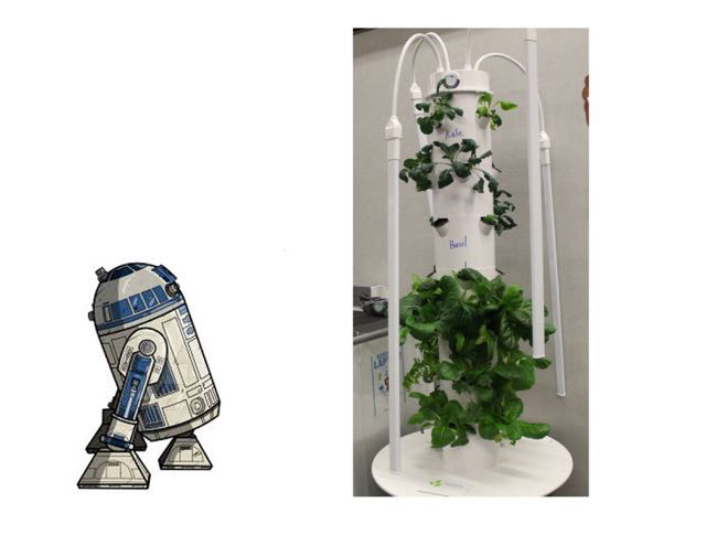 Aeroponics tower with lettuce